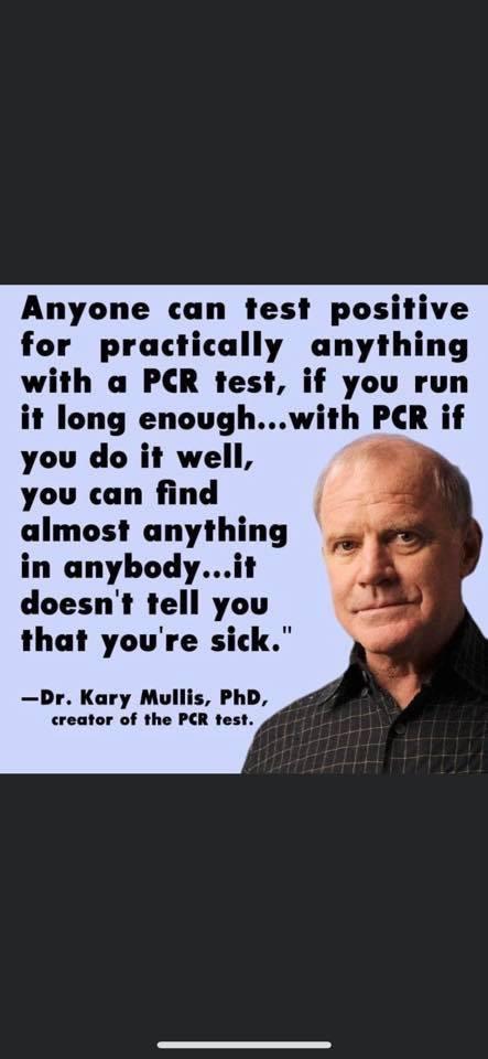 PCR-Test-Mullis